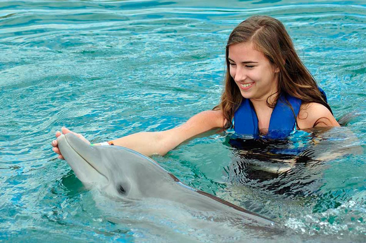 Dolphin Discovery Costa Maya - Mahahual - Paradise
