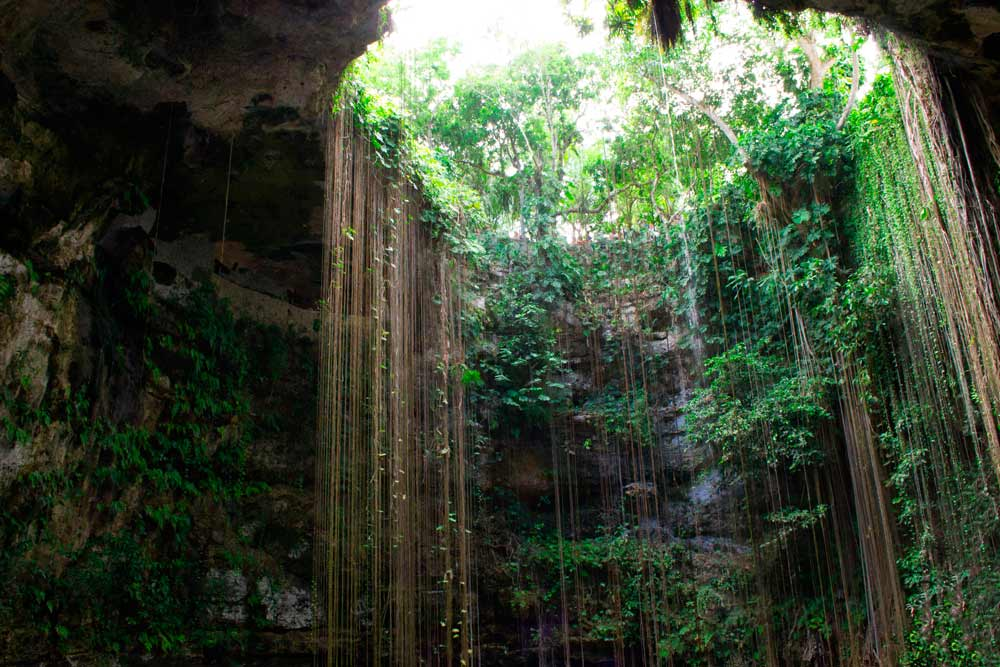 Sacred Cenotes In The Sian Ka An Biosphere