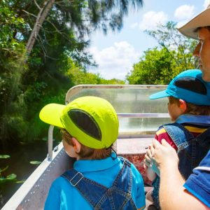 Why Choose Ecologically Friendly Vacations