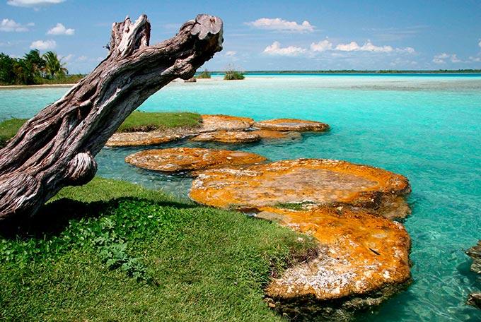 Mindful Ecotourism